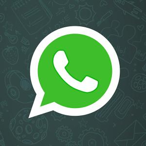 Zobacz ZDZ na WhatsApp